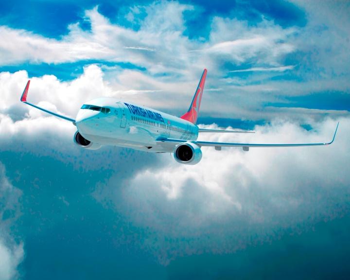 Turkish Airlines Aircraft.jpg